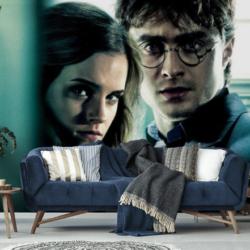 Fototapeta Harry Potter: dekoracja na podstawie kultowej sagi
