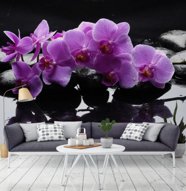 orchidea (2)
