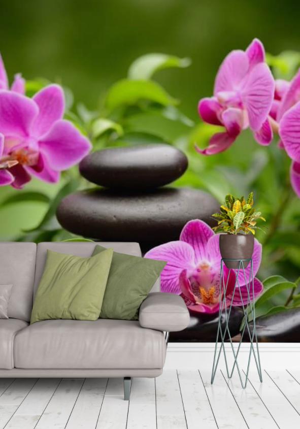 orchidea (5)